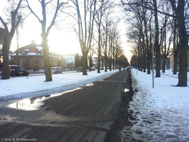 Passerar en av promenaderna. Södra promenaden i Norrköping kl 16:54 den 27 februari 2013.