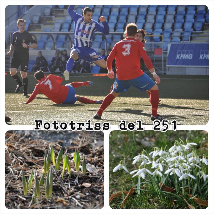 Fototriss del 251