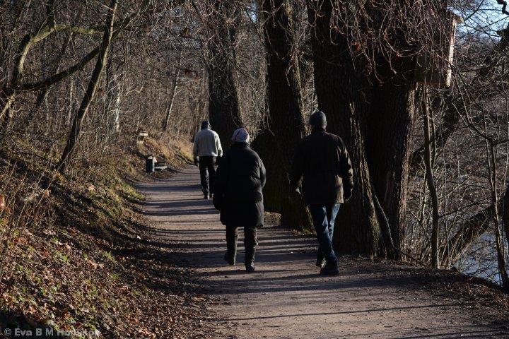 Stigen vid Åbackarna som slingrar sig utmed Motala ström.