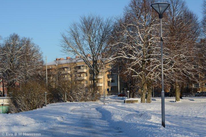 I natt föll snön och hela stan är vit. Solen skiner och det blir en ny långpromenad genom stans östra och norra delar.