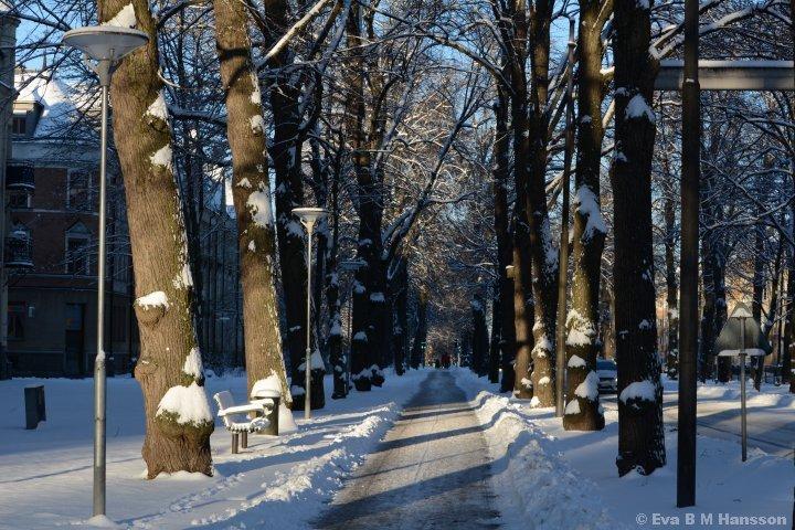 Den vackra Östra Promenaden.