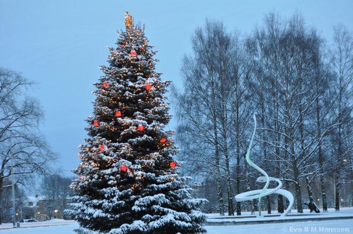 """Julgranen och fontänskulpturen """"Spiral åtbörd"""" vid Kristinaplatsen utanför Norrköpings Konstmuseum."""