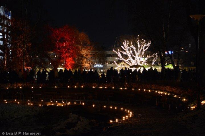 Nyårspromenaden genom Strömparken i Norrköping.