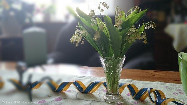 Ljuvliga liljekonvaljer. Söderstaden kl 16:28 den 24 maj 2015.